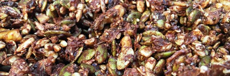 choc-granola-closeup-web